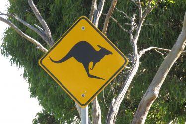 #2 Visiting Australia...