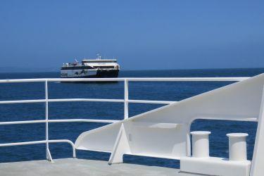 #141 Sea Link Ferry to Kangaroo Island