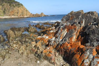 #148 Shipping Cove