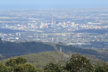 #173 Adelaide