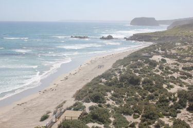 #159 Seal Bay Conservation Park